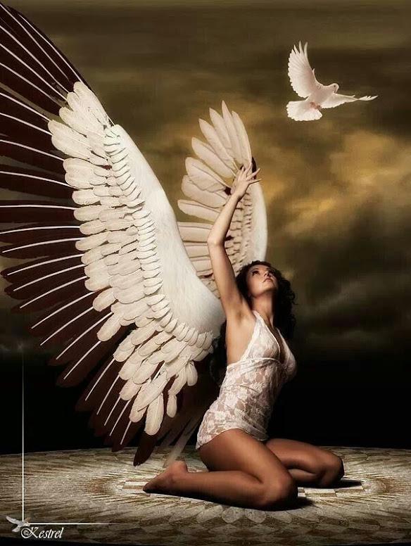 ANGEL-REACH-UPWARD